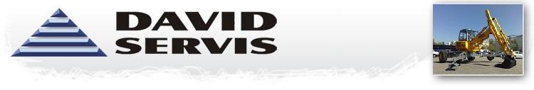 logo David Servis